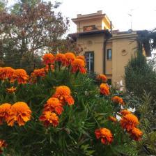 Ariccia, Villino Volterra