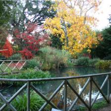 Orto Botanico di Roma - Laghetto