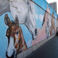 cavalli carlos atoche