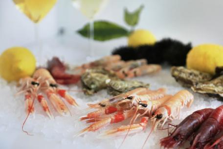 Fish&Wine Festival