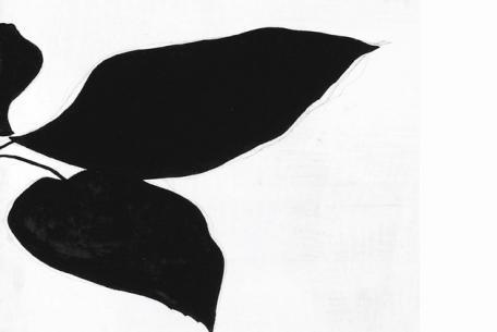 La Signora dell'Arte. Opere dalla collezione di Bianca Attolico da Mafai a Vezzoli