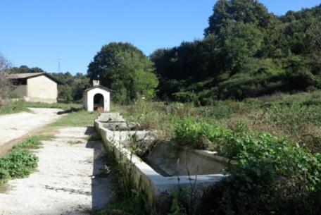 Riserva Naturale della Marcigliana foto sito ufficiale Riserva